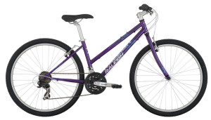 2014 Raleigh Eva 2.0 Purple