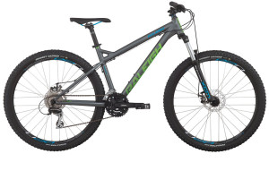 2015 Raleigh Tokul 1 Dark Silver