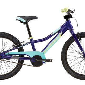 2016 Cannondale Trail 20 Single-Speed Girls Pixie Powder Blue, Gloss