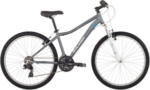 2014 Raleigh Eva 3.0 Womens Silver Mountain Bike