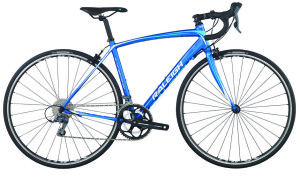 2014 Raleigh Capri 1Blue