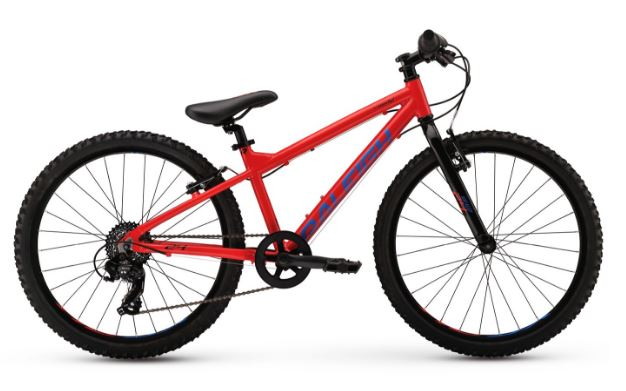 2017 Raleigh Rowdy 24 Red/Blue