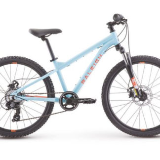 2018 Raleigh Tokul 24 Blue