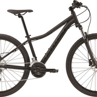 2017 Cannondale Foray 2 BBQ