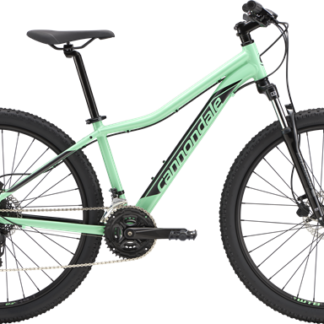 2019 Cannondale Foray 2 Mint/Gray