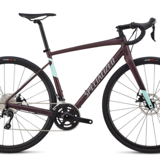 2019 Specialized Diverge E5 Comp Satin Cast Berry/ Mint