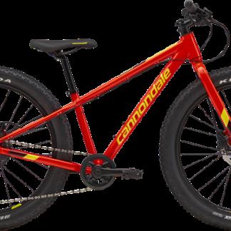 """24"""" Bikes"""